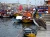 De veelal houten vissersboten zijn er in de kleuren van de regenboog