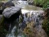 Het water van deze stromingen is bijzonder schoon en heerlijk om te drinken
