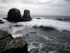 Een van de bekendste surfplekken is Punta de Lobos. Punt van de zeeleeuwen, die hier dikwijls naast de surfers opduiken.