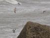 Surfers houden ook van golven.